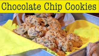 Easy Chocolate Chip Cookie Recipe – Soft & Chewy — The Frugal Chef